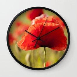 Romantic Poppy field Wall Clock