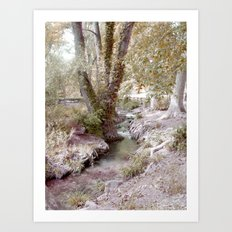Cristaline  Art Print
