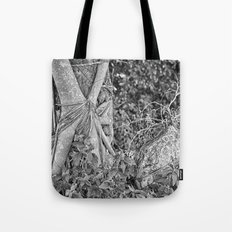 Strangler fig and boulder in the rain forest Tote Bag