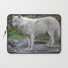 Arctic Wolf HDR Laptop Sleeve