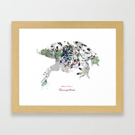 Natura Technica - Oregon Spotted Frog Framed Art Print