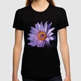 Evening Nymphaea T-shirt