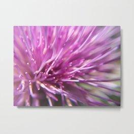 Pink plant Metal Print