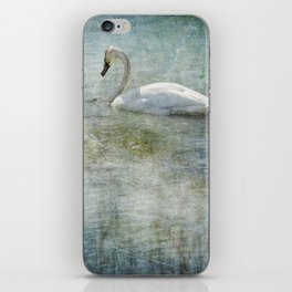 A Swan's Reverie iPhone Skin