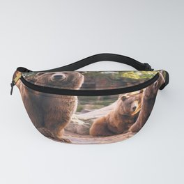 Spectecular Group Gracious Grizzly Bears Sitting In Habitat Waving At Camera Ultra HD Fanny Pack