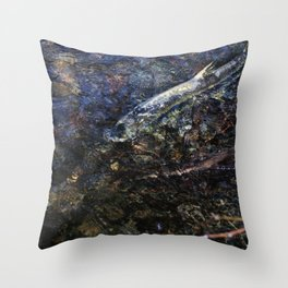 That last stretch of life Throw Pillow