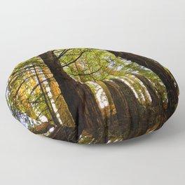 Within The Redwoods Floor Pillow
