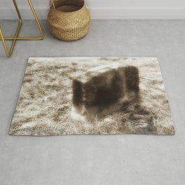 Final Resting Place photography Rug