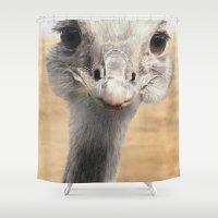 ostrich Shower Curtains featuring Strauß / ostrich by Heike Langenkamp