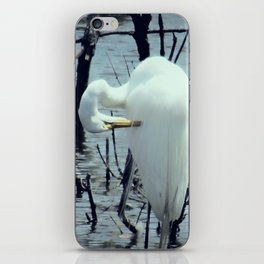 Great Egret in Water A108 iPhone Skin