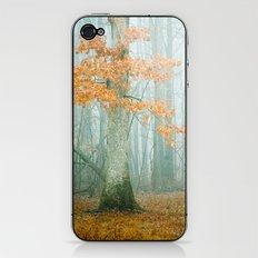 Autumn Woods iPhone & iPod Skin