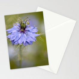 Nigella #1 Stationery Cards