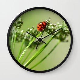 Spring 79 Wall Clock