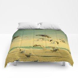 Flight Pattern Comforters