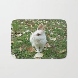 Spring of rabbit Bath Mat
