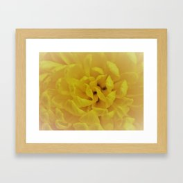 Misty Flower Framed Art Print