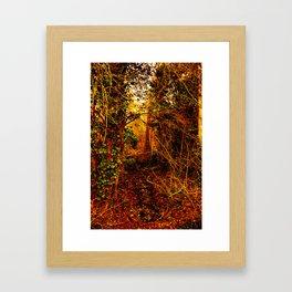 Winter forest stream Framed Art Print