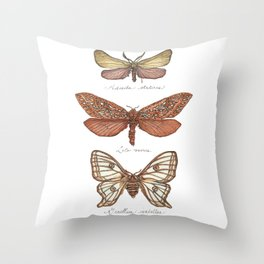Forester Moth, Venus Moth & Spanish Moon Moth Throw Pillow