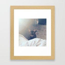 wake up, human Framed Art Print