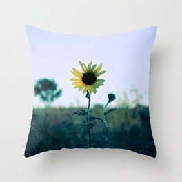 On The Way To California Throw Pillow