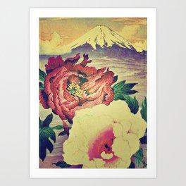 Flowering at Hamata Art Print
