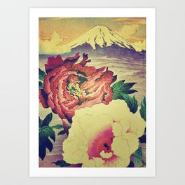 Flowering at Hamata Art Print