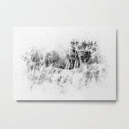 Whitetail Deer (Black and White) Metal Print