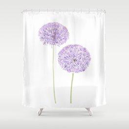 2 purple Allium watercolor  Shower Curtain