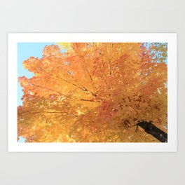Autumn Explosion Art Print