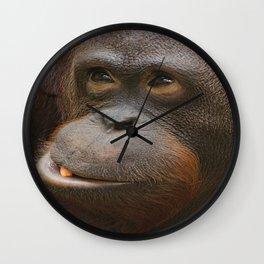 Orangutan Face Wall Clock