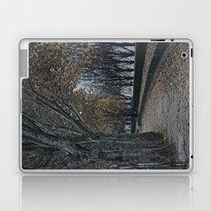 Painting or Photo?? Laptop & iPad Skin