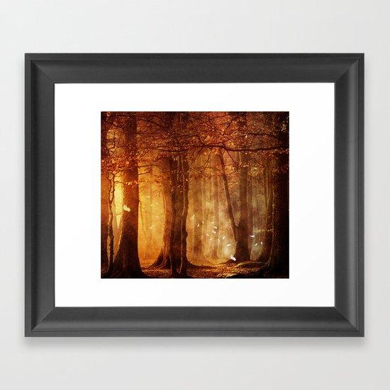 In the woods. Framed Art Print
