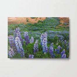 Flowers over a Geyser Metal Print