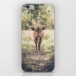 Highland scottish cow cattle long horn iPhone Skin