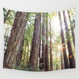 Sunlight Through Redwoods Wall Tapestry