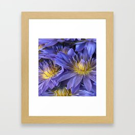 Luxurious, Elegant Tropical Lilac-Blue Hawaiian Lilies Framed Art Print