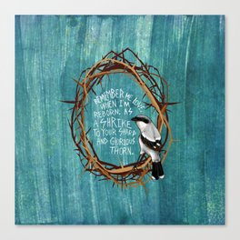 shrike with thorns Canvas Print