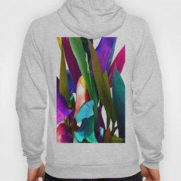 Colorful Lizard Hoody