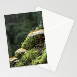 Little Things in a Big Forest Stationery Cards