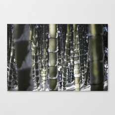 Kyoto Winter 2015 II (bamboo)  Canvas Print