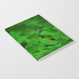 white green Notebook