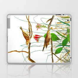 Savannah Finch Bird Laptop & iPad Skin