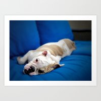puppy Art Prints featuring Puppy by brushnpaper