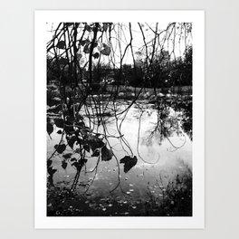 meet me by the lake Art Print
