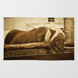 Mini Horse At The  Water Trough  Rug