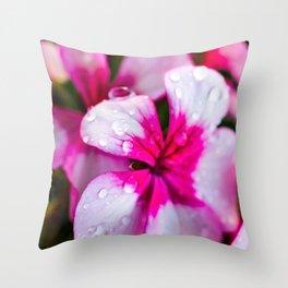 Dewey Geraniums Throw Pillow