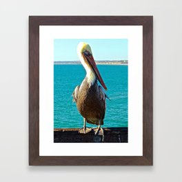 Portrait of a Perky Pelican Framed Art Print