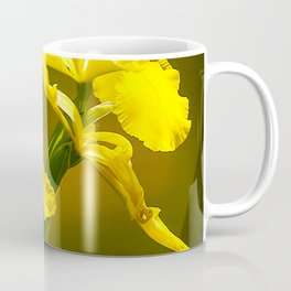Yellow Daffodils in Exquisite Repose Coffee Mug