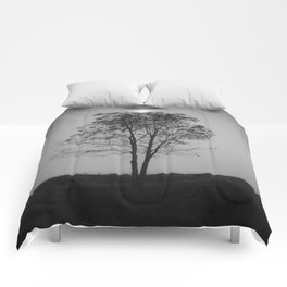 Moon over a tree Comforters