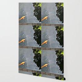 Koi Astound Wallpaper
